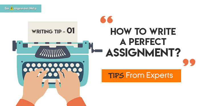 Write a Perfect Assignment