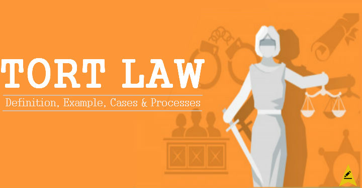Types of Torts Law